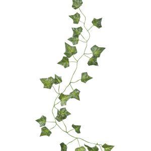 Decoratieve klimop 2m (5st) Beautiful Botanics Ginger Ray