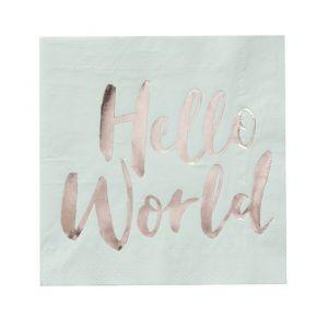 Hello World Babyshower Servetten mint (20st) Ginger Ray