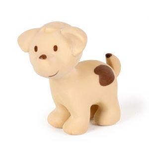 Tikiri bijt/badspeeltje Hond