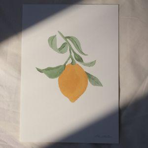 Poster Lemon A4 À La