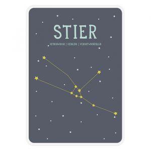 Sterrenbeeld mijlpaal bordje Stier Milestone