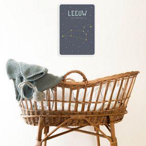Sterrenbeeld mijlpaal bordje Leeuw Milestone
