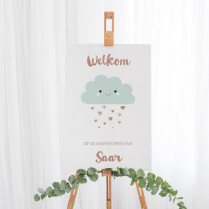 Welkomstbord babyshower Hello world